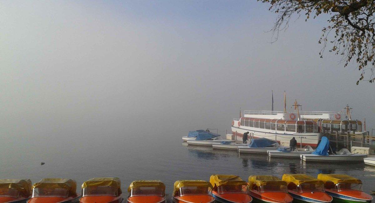 Boote auf dem Titisee - Touren in den Schwarzwald mit Blickpunkt Freiburg